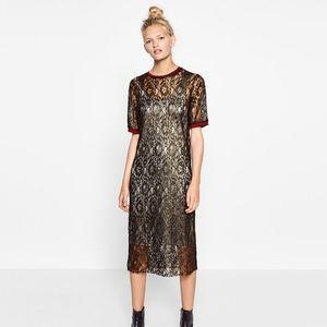 Zara Lace Dress- Size Small
